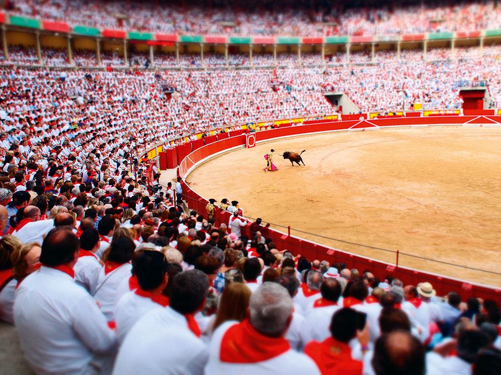 A matador in action