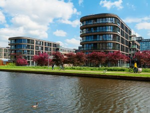 The real estate market in the Netherlands is on the move
