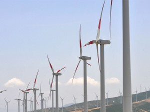 The EU has upset green campaigners by indicating that its set to drop its renewable energy targets