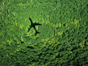 JetBlue helps sustainable aviation take off with carbon offsets