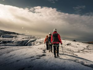 Penguins: how to get the most out of employee rewards programmes